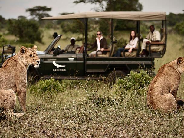Сердце дикой природы: Танзания