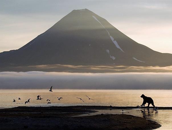Никарагуа, Коста-Рика, Панама