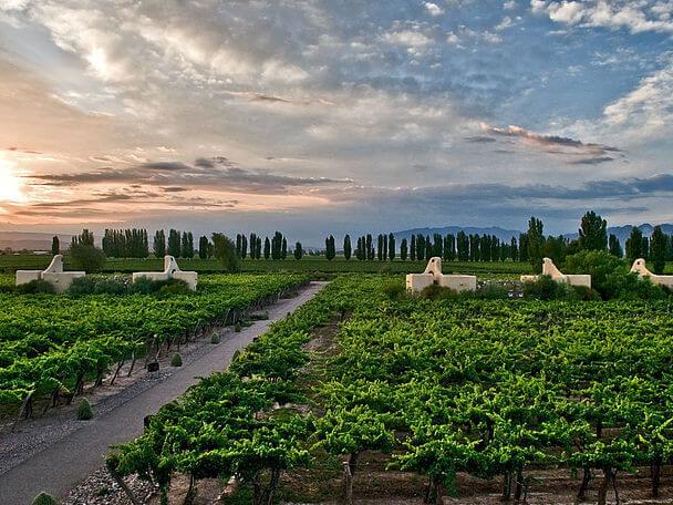 отель Cavas Wine Lodge Мендоза Аргентина