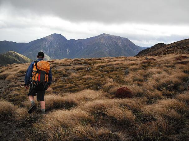 путешествие туры Новая Зеландия