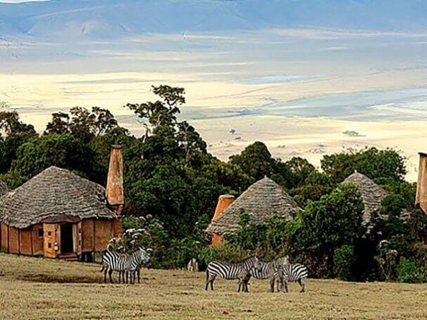 отель Танзания Кратер Нгоронгоро Crater Lodge