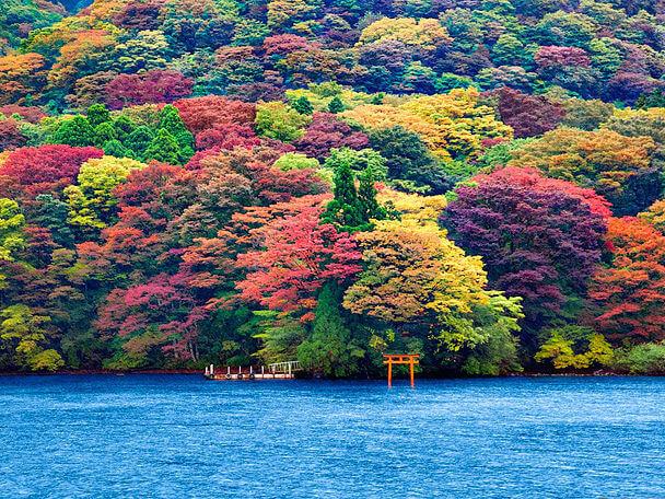 путешествие туры Япония